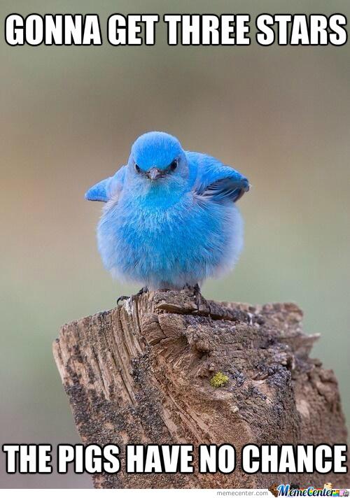 angry-birds_o_1659483.jpg